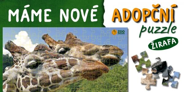 adopční puzzle-žirafy