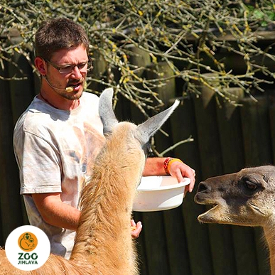 Do zoo s průvodcem o víkendu a svátcích