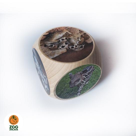 Dřevěná kostka