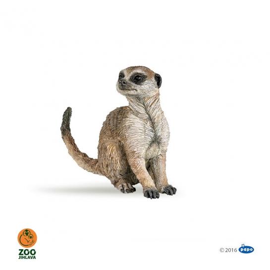 Figurka surikata