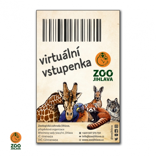 Virtuální vstupenka